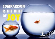 Comparison is the thief of joy Food For Thought, Wine Glass, Joy, Tableware, Quotes, Ideas, Frases, Store, Ropes