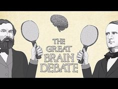 Throughout history, scientists have proposed conflicting ideas on how  the brain carries out functions like perception, memory, and movement.  Is each of these tasks carried out by a specific area of the brain? Or  do multiple areas work together to accomplish them? Ted Altschuler investigates both sides of the debate.