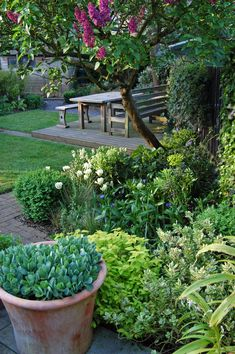 A large family garden design with lawn, seating and planting areas, Ealing, West London Narrow Garden, Family Garden, West London, Garden Paths, Beautiful Gardens, Lawn, Garden Design, Layout, Planting