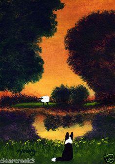 Border Collie Dog Sheep Modern Outsider Folk Art Print Todd Young Summer Pond | eBay