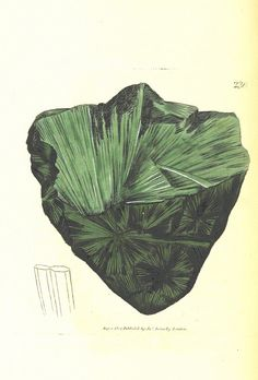 Image taken from page 122 of 'British Mineralogy: or coloured figures intended to elucidate the mineralogy of Great Britain. By J. Sowerby (with assistance). F.P'   by The British Library