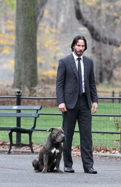 John Wick: Chapter 2 (@JohnWickUpdates) | Twitter Looks like the Dog survives THIS movie! :)