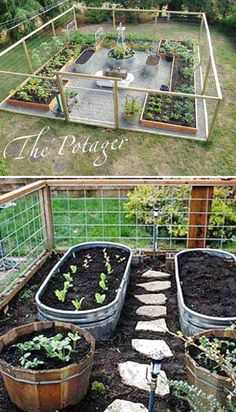 30 Amazing Ideas For Growing A Vegetable Garden In Your Backyard – Gardening T. - 30 Amazing Ideas For Growing A Vegetable Garden In Your Backyard – Gardening Tips Live Imágenes e - Backyard Vegetable Gardens, Outdoor Gardens, Veg Garden, Fenced Garden, Garden Tools, Organic Gardening, Gardening Tips, Flower Gardening, Container Gardening