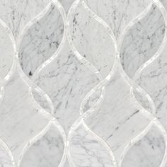 "Artistic Tile: Bianco Carrara Clardiges Stone & Shell Water Jet Mosaic  9-1/4"" x 24"" x 3/8"""