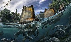 Spinosaurus (Foto: Davide Bonadonna, University of Chicago, Natural History Museum, Milan)