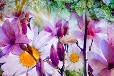 APRIL FLOWERING | Missoni