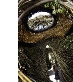 Ballroom' stickwork sculpture by Patrick Dougherty at Federation Square.  Photo – Julie Renouf.