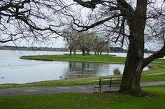 Wendouree Lake, Ballarat