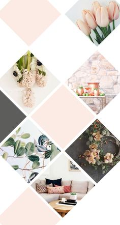 I like the idea of different shapes in the mood board depending on client or brand.