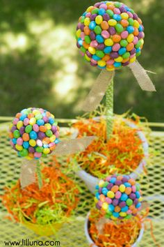 Jelly Bean Topiary tutorial