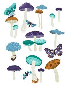 Art Print - Mushroom Identification Chart. $20.00, via Etsy.