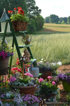 A Ladder to Plant for the Potting Shed | homeiswheretheboatis.net #garden #spring