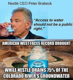 Nestle is one of the single worst corporations regarding social responsibility and human rights.
