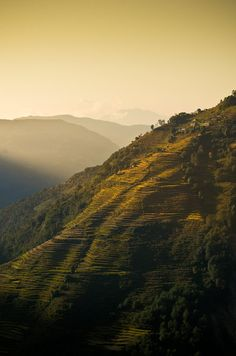 Nepal, Annapurna region, Himalayas♥♥♥