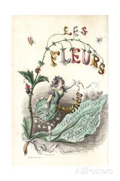 Title Page with Illustration of Flower Fairy Standing on a Flower Giclee Print