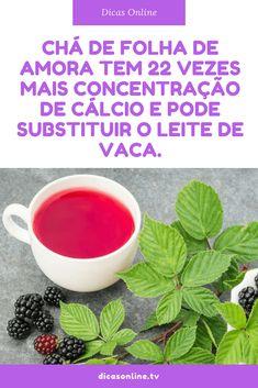 Chá de amora beneficios