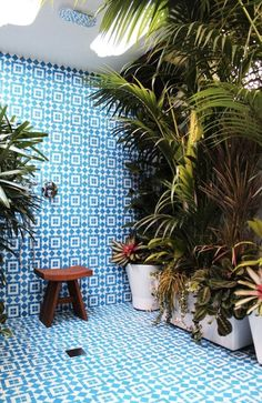 12 Outdoor Showers: We spotted this Long Beach, California residence in an Apartment Therapy house tour. The streaming sunlight and tropical greenery had us fooled—it's actually an indoor bathroom with a skylight.
