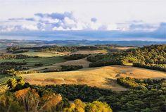 Uccl destaca el incremento del desarrollo rural en Castilla y León http://www.revcyl.com/www/index.php/economia/item/1284-uccl-destaca-el-incremento-del-desarrollo-rural-en-castilla-y-le%C3%B3n