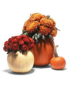 Pumpkin Cachepots |