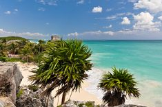 Plan Your Bachelorette Party in Tulum Mexico Guide) Bridal Shower Questions, Bridal Shower Games, Bridal Shower Decorations, Bridal Shower Invitations, Bridal Showers, Bachelor Party Games, Bachelorette Party Food, Newlywed Game Questions, Cozumel