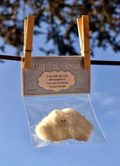 *Rook No. 17: recipes, crafts & whimsies for spreading joy*: My Pet Cloud -- An Adorable, Easy and Inexpensive Craft