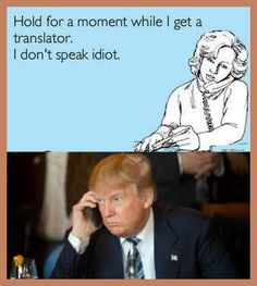 I had a thought, if the Trump campaign admits he is an idiot then what does that make those that vote for a confessed idiot?