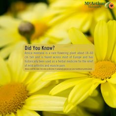 Did You Know? Arnica Montana...  Arnica montana is a rare flowering plant about 18–60 cm tall and is found across most of Europe and has historically been used as a herbal medicine for the relief of mild arthritis and muscle pain.  Our Therapeutic range of products are listed on the Australian Register of Therapeutic Goods and each contain high concentrations of natural active ingredients traditionally used in herbal medicine including; Aloe Vera, Chickweed, Arnica and Chamomile.