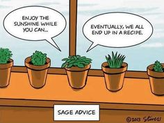 """""""Sage advice"""" Just a little organic humour to brighten up your day Enjoy The Sunshine, Science Humor, Biology Humor, Friday Humor, Food Humor, Food Jokes, Brighten Your Day, Inevitable, Funny Quotes"""