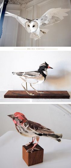 Today I Love: Anna Wili Highfield's PaperSculptures - Home - Creature Comforts - daily inspiration, style, diy projects + freebies