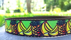 Pineapple's and Banana's 1 Inch Width Dog Collar by WillyWoofs