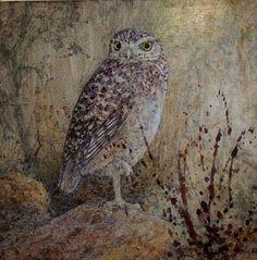 """Burrowing Owl and Splash "" by Floy Zittin, size 8x8"