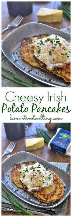 Cheesy Irish Potato Pancakes from Lemon Tree Dwelling. I will make these when I have some leftover mashed potatoes. Scottish Recipes, Irish Recipes, Irish Desserts, Asian Desserts, Brunch Recipes, Breakfast Recipes, Jai Faim, Irish Potatoes, Good Food