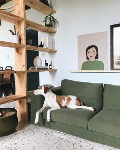 Adore this green sofa and open shelving unit used as a room divider to zone the living space.