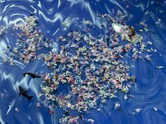 Pacific Garbage Patch Google Earth | Great Pacific Garbage Patch Google Earth Great Pacific Garbage Patch, Car Pictures, This Is Us, Patches, Earth, Future, Google, Future Tense