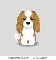 Find King Charles Spaniel Puppy Vector Illustration stock images in HD and millions of other royalty-free stock photos, illustrations and vectors in the Shutterstock collection. Cute Fluffy Puppies, Cute Dogs And Puppies, Baby Puppies, Dog Clip Art, Dog Art, Spaniel Puppies, Cocker Spaniel, Cute Dog Drawing, Dog Illustration