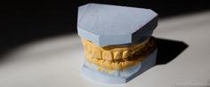 Dental Revelations Blog-3877