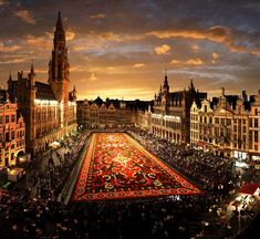 Brussels, flower carpet in the Grande Place