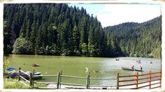 Lacul Rosu Romania, Golf Courses
