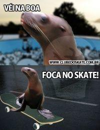 tirinha véi na boa foca no skateboard.