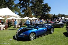 The Quail – A Motorsport Gathering Bugatti Veyron, Quail, Bmw, Cars, Sports, Hs Sports, Quails, Autos, Sport