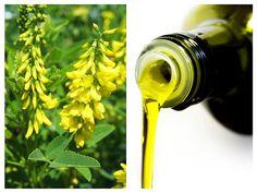 Natural Health Remedies, Hair Styles, Sport, Medicine, Varicose Veins, Diet, Embroidery, Hair Plait Styles, Deporte