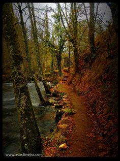 ruta  Muiños  Ourense  Spain