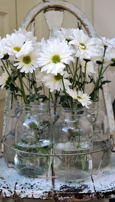 white daisy's in mason jars...my favorite flowers! i'll take these over roses any day! <3