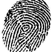 Because every person's fingerprints are different, they have become a useful tool in criminal investigations. Many forensic detectives and crime scene investigators use aluminum powders to dust and lift fingerprints. Most people do not have the necessary chemicals to re-create professional fingerprint powder, so here is a way to make your...