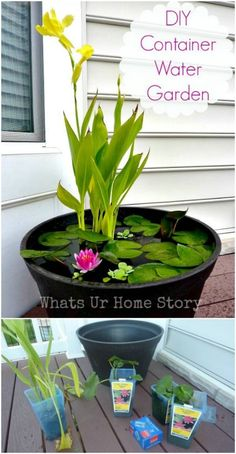 20 Charming And Cheap Mini Water Garden Ideas For Your Home And Garden - 20 Cha. - 20 Charming And Cheap Mini Water Garden Ideas For Your Home And Garden – 20 Charming And Cheap M - Container Water Gardens, Container Gardening, Diy Container Pond, Small Water Gardens, Ponds Backyard, Backyard Landscaping, Landscaping Ideas, Patio Pond, Organic Gardening