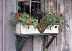 Who says windowboxes are only for houses? Love the way this rustic windowbox filled with nasturtiums looks on this old barn! | 13 wonderful windowboxes | Living the Country Life | http://www.livingthecountrylife.com/gardening/garden-ideas/13-wonderful-windowboxes/