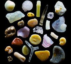 What's in a grain of sand? A whole lot more than you think. Gary Greenberg documents the beauty of microscopic sand grains from around the world. Image Beautiful, Beautiful Things, Wonderful Things, Fotografia Macro, Things Under A Microscope, Sand Under Microscope, Grain Of Sand, Psychedelic Art, Rocks And Minerals