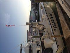 6 sailfish!