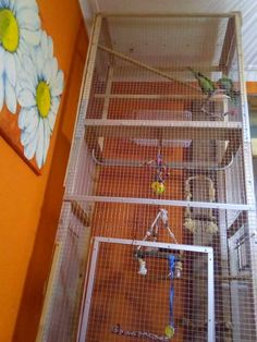 I hacked a new bird cage for my cute birds/parrots (Myiopsita Monachus), from an old IKEA wardrobe (almost I can't remember the name. Parrot Pet, Parrot Toys, Ikea Wardrobe, Ikea Hackers, Cute Birds, Exotic Birds, New Tricks, Bird Cage, Bird Houses
