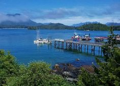 5 Things I Discovered About the Sunshine Coast, British Columbia - Travel Continuum Places To Travel, Places To Go, Sunshine Coast Bc, Spring Watch, Canada Travel, 5 Things, British Columbia, Travel Photos, Tourism